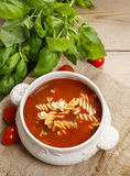 Bowl of tomato soup and basil plant Royalty Free Stock Image
