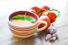 Bowl of tomato soup gaspacho Royalty Free Stock Photo