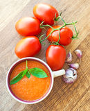 Bowl of tomato soup gaspacho Royalty Free Stock Photos