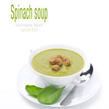 Bowl of traditional spinach soup with croutons, isolated Stock Photography