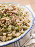 Bowl of Tuna and Bean Salad Royalty Free Stock Image