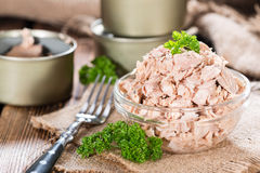 Bowl with Tuna Stock Photography