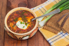 Bowl of Ukrainian borscht garnished with dill and sour cream Royalty Free Stock Photos