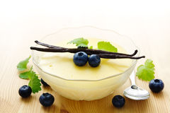 Bowl of vanilla pudding Royalty Free Stock Photo