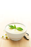 Bowl of vanilla yogurt Stock Photography