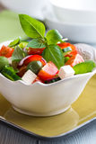 Bowl of Vegetable Salad with Feta and Olives Royalty Free Stock Image
