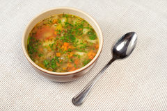 Bowl of vegetable soup. Bowl of romanian or moldavian vegetable soup Royalty Free Stock Photos
