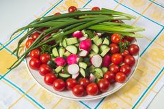 Bowl of vegetables on a napkin Stock Image