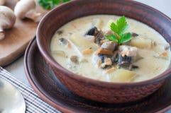 Bowl of vegetarian mushroom soup Stock Images