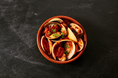 Bowl of Venus shell clams in a spicy sauce Royalty Free Stock Images