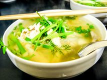 Bowl of Vietnamese pho noodle soup with chicken. Bowl of Vietnamese pho noodle soup with chicken, tendon, tripe and brisket served with onions, scallions and Royalty Free Stock Photography