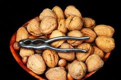 Bowl of walnuts and hazelnuts. Royalty Free Stock Image