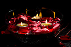 Bowl of water with rose petals Stock Images