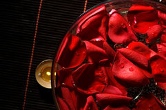 Bowl of water with rose petals Stock Photos