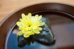 Bowl of water with spa stones Royalty Free Stock Image