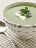 Bowl of Watercress Soup with Cr me Fraiche Royalty Free Stock Photos