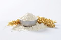 Bowl of wheat flour Royalty Free Stock Image