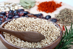 Bowl of wheat,lentil and red chili powder Royalty Free Stock Images