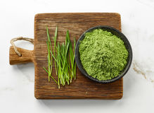 Bowl of wheat sprout powder Royalty Free Stock Images