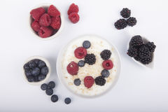 Bowl of white yogurt with berries and oat flakes isolated. On white background Royalty Free Stock Images