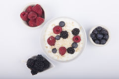 Bowl of white yogurt with berries and oat flakes isolated. On white background Stock Image