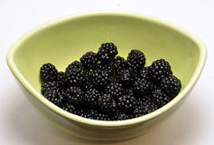 Bowl of wild blackberries Royalty Free Stock Images