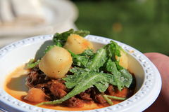 Bowl of wild Boar,Gnocchi and fresh arugula Stock Photos