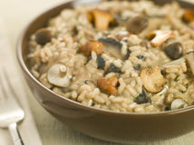 Bowl of Wild Mushroom Risotto. With fork Royalty Free Stock Photos