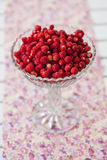 Bowl of wild strawberries Stock Images