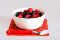 Bowl With Berries Stock Image