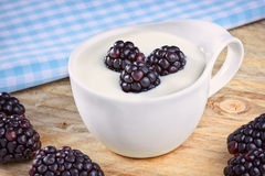 Bowl of yogurt and fresh Blackberries on a wooden table Royalty Free Stock Images