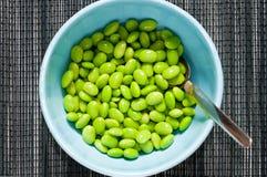 bowla förberedda soybeans Royaltyfria Bilder