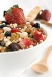 bowla granola Royaltyfri Bild