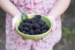 Bowla med bär i händerna av lite flickan Royaltyfria Foton