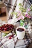 Bowla med den nya körsbärsröda bär och kopp te och blommor, sommarmellanmål Royaltyfri Bild