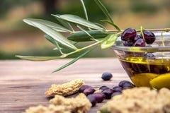 Bowla med extra jungfrulig olivolja, oliv, en ny filial av olivträdet och nära övre för cretanskorpadakos arkivfoto