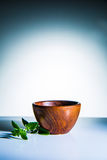 bowla trä Royaltyfri Fotografi