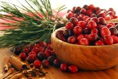 bowlar cranberries Fotografering för Bildbyråer