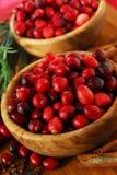 bowlar cranberries Arkivfoton