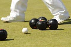 bowlar lawn Royaltyfria Foton