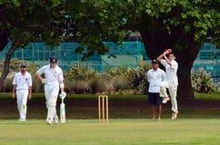 A bowler bowling to a batsman. Stock Photo