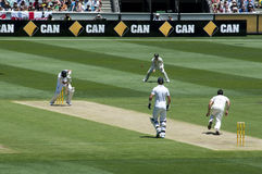 Bowler bowls to batsman in Ashes Cricket Royalty Free Stock Photography