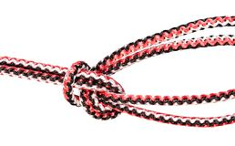 Bowline on a bight knot close up on rope. Bowline on a bight knot close up tied on synthetic rope cut out on white background royalty free stock images