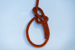 Bowline. Knotted on a white background stock photos