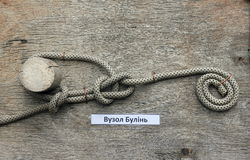 Bowline a node Royalty Free Stock Image