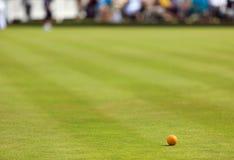 Bowling green del césped con el enchufe Imagenes de archivo