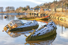 Bowling harbour sunken boats. Sunken fishing boats lined up in the scottish harbour at Bowling Royalty Free Stock Photography
