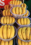 Bowls of bananas. For sale in a greengrocery Stock Photography