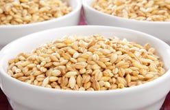 Bowls of barley Stock Image