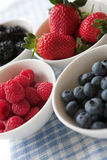 Bowls of berry goodness. Lovely ripe berries presented in white bowls on a gingham cloth - shallow dof Royalty Free Stock Images